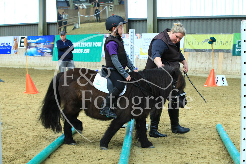 Gymkhana P2.1 Pony St. 0