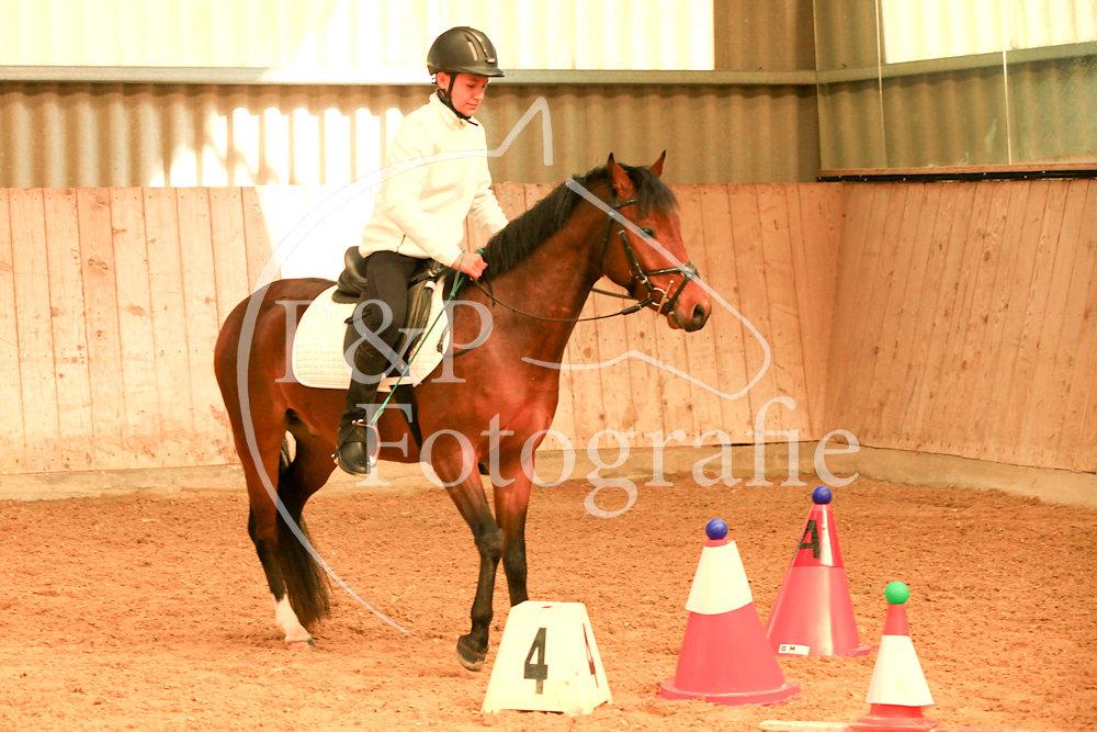 Gymkhana P2.3 Pony St.1plus