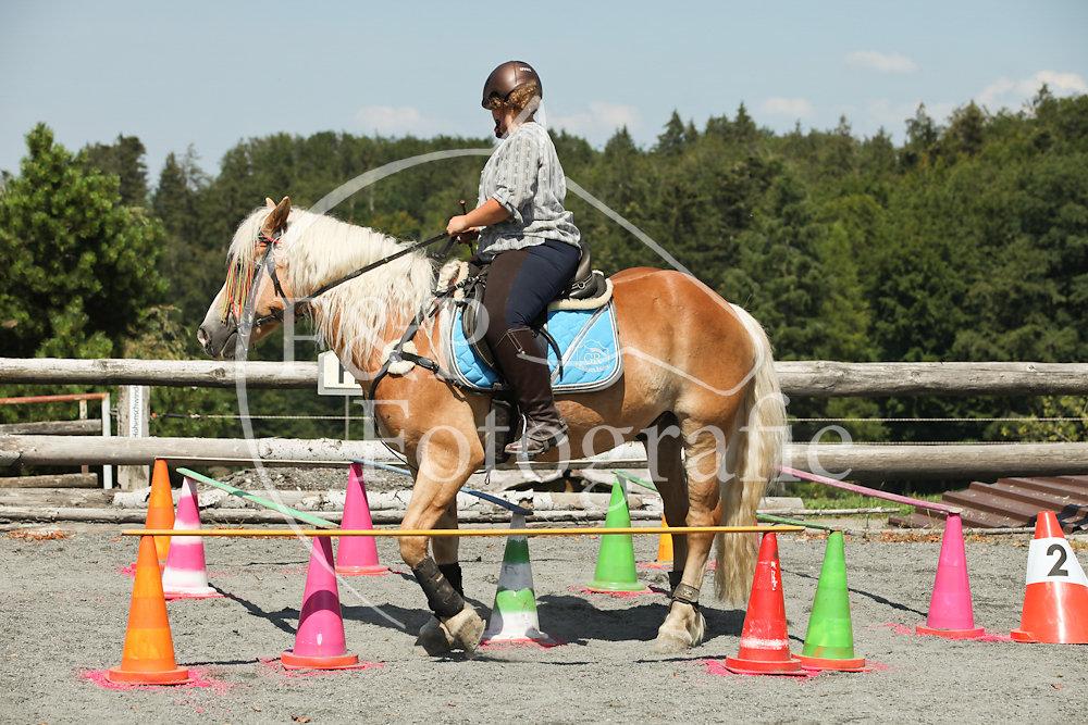 Gymkhana P4 Pony Stufe 2