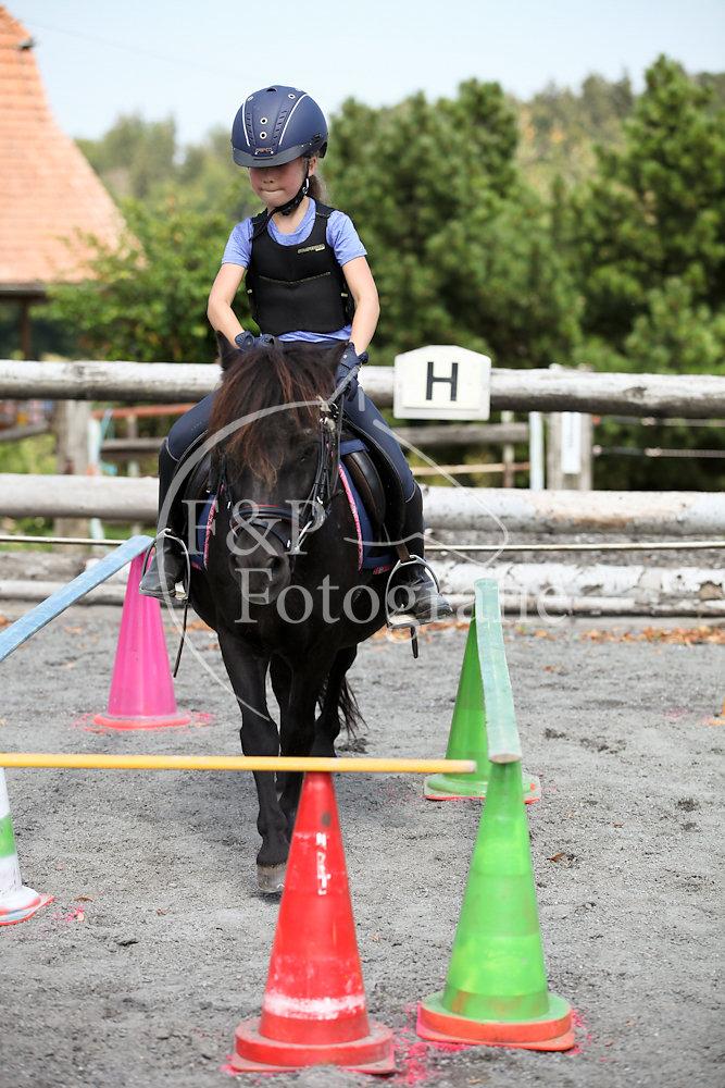 Gymkhana P3 Pony Stufe 1