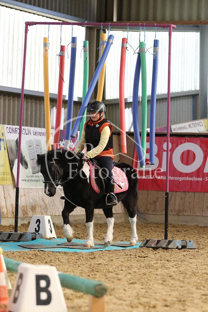 Gymkhana St.1 Pony SVPK P2.2