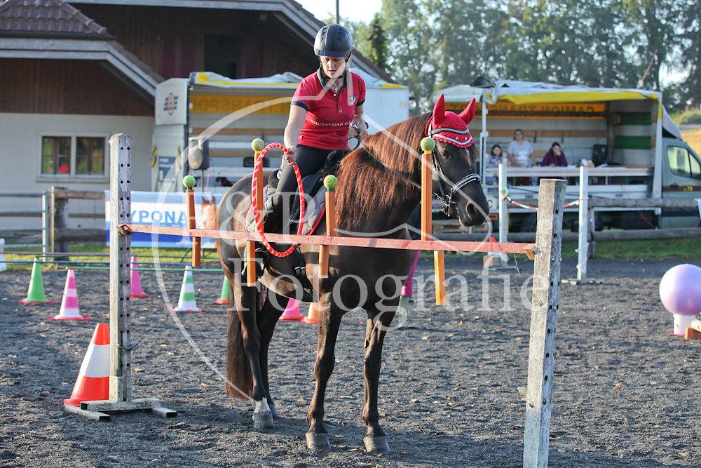 Gymkhana P1 Pferd Stufe 2